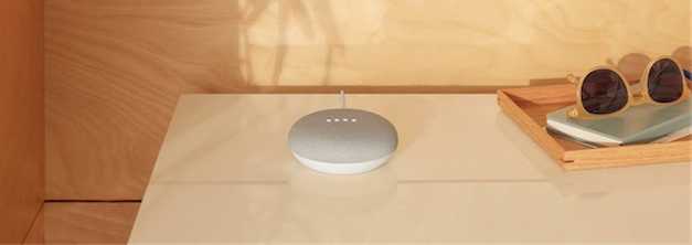 Google Home Mini Galet